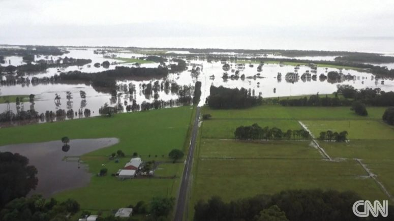 Spiders and snakes swarm Australian homes as they flee record floods